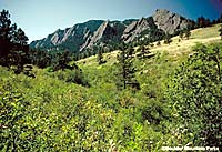 The Flatirons of Boulder